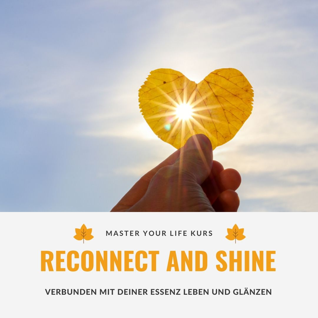 Reconnect and Shine