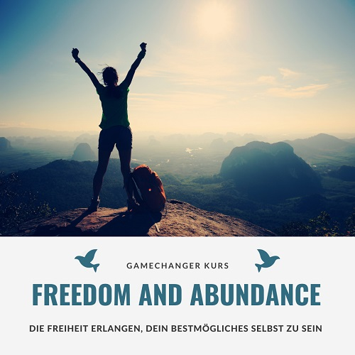 Gamechanger_Freedom and Abundance
